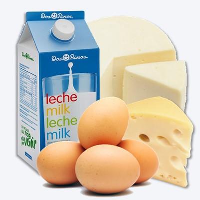 Lácteos y huevos